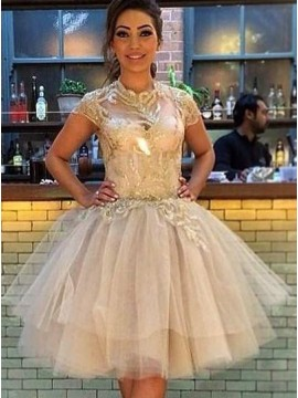 A-Line High Neck Short Sleeves Champagne Tulle Homecoming Dress Appliques