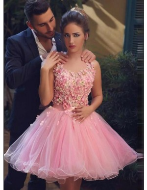 A-Line Round Sleeveless Above-Knee Pink Homecoming Dress with Appliques